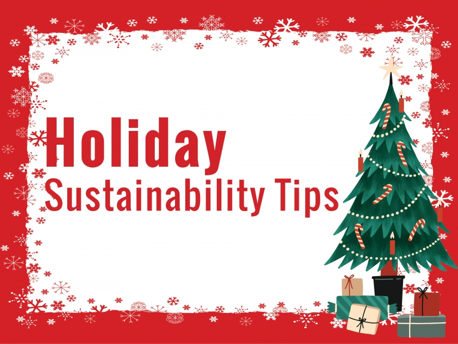 Sustainability Tips During the Holidays